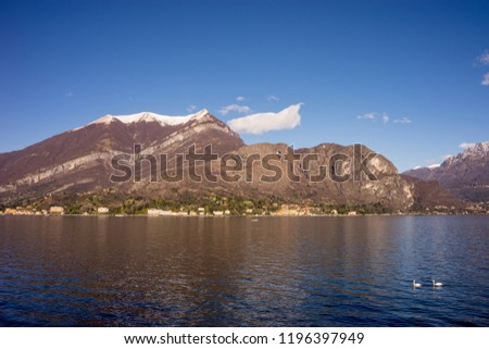 Italy, Bellagio, Lake Como, SCENIC VIEW OF SNOWCAPPED MOUNTAINS AGAINST BLUE SKY with swans on lake #1196397949