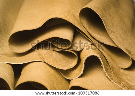 Italy, Naples, cow leather in a leather factory
