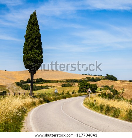 Italy, Tuscany; a road in the middle of the country, close to Asciano