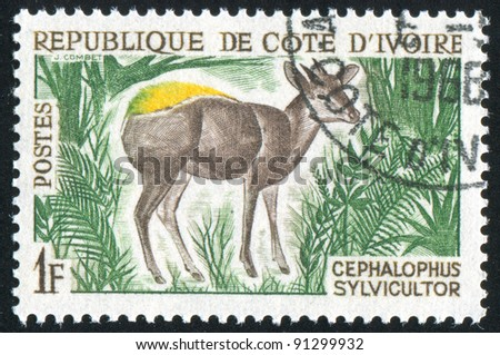 IVORY COAST CIRCA 1964: stamp printed by Ivory Coast, shows Yellow-backed duiker, circa 1964