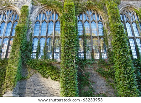 Ivy covered college building with Gothic style windows