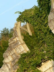 Ivy covering a ruined stone arch on an abandoned, crumbling building. Golden evening light illumnates the stonework; trees in the background and a blue sky