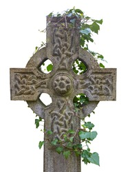 Ivy Growing Around An Ancient Celtic Cross Gravestone, Isolated On A White Background