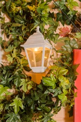 Ivy wrapped window opening of house. wildlife plants home window climb. Retro lantern in an arch of wild grapes, building with sprawling liana.climbing plant on window outside.wall of leaves