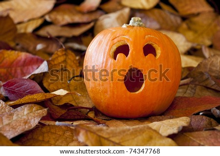 Jack-o-lantern with a surprised expression with colorful fall leaves