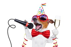 jack russell dog celebrating new years eve with champagne and singing karaoke with a microphone, isolated on white background