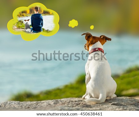 jack russell dog missing and thinking about the past with owner , outdoors by the river in a speech bubble #450638461