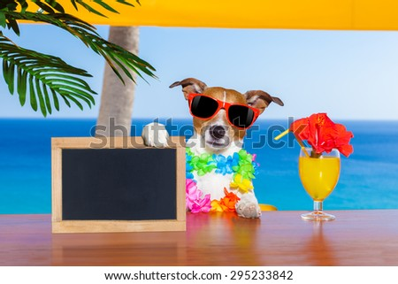 jack russell dog  with a summer cocktail holding an empty blank blackboard or banner, on  vacation holidays