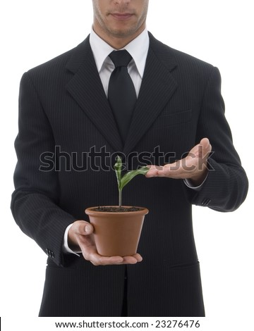 Jacketed and tied business man brushing a plant in a terracotta vase