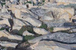 Jagged rocks perpendicular to the ground. Close-up and selective focus.
