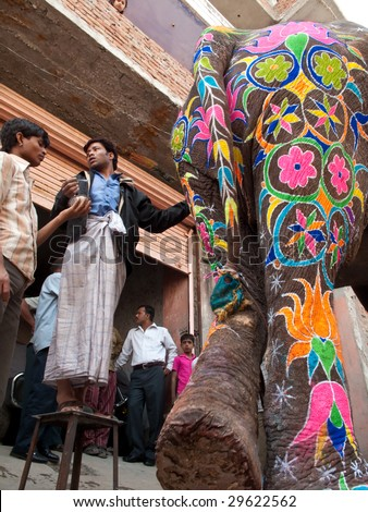JAIPUR, INDIA - MARCH 10: Artists prepare an elephant for the annual elephant festival and parade by painting the animal with colorful powders on March 10, 2009 in Jaipur, India