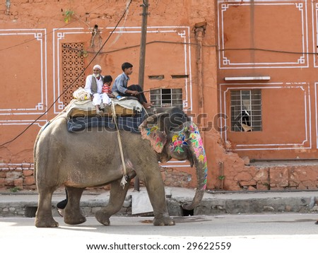 JAIPUR, INDIA - MARCH 10: Painted elephant walks through the old city to join the elephant festival and parade on March 10, 2009 in Jaipur, India