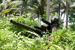 Jaluit atoll, Marshall Islands - Anti-aircraft artillery on Imej island