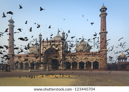 Jama Masjid mosque in Old Delhi India