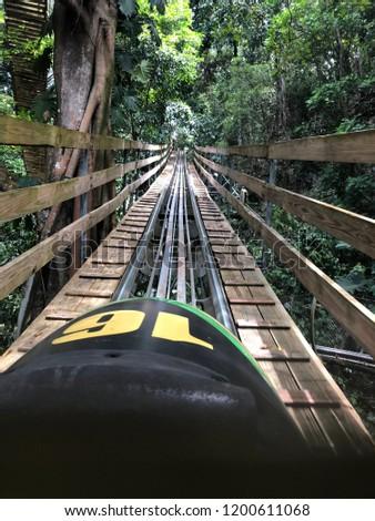 jamaica bob sled
