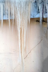January icicles after a thaw on the roof of an old barn, against the background of a light wall.