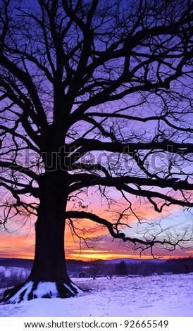 January sunrise under White Oak, Webster County, West Virginia, USA