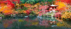 Japan autumn image. Beautiful Japanese garden with a pond and red leaves. Daigo temple in Kyoto.