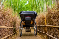 Japan. Bamboo Grove Sagano. Stroller rickshaws rear view. Empty rickshaw stroller in bamboo grove. Tours of Sagano Grove. Sights of Japan. Japanese traditional transport. Footpath in bamboo thickets.