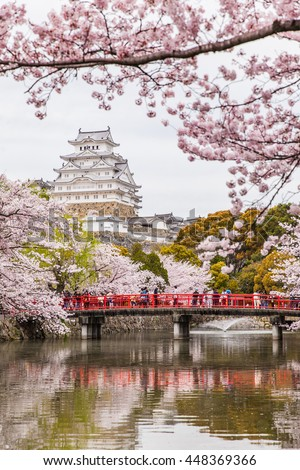 Japan Himeji castle , White Heron Castle in beautiful sakura cherry blossom season - Shutterstock ID 448369366