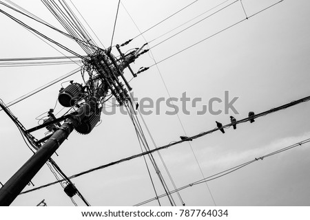 Japan Power Line Cable Pole Black and White