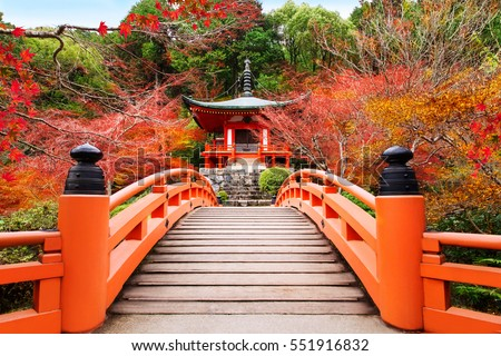 Japanese autumn fall. Kyoto Daigoji temple. Famous temple with autumn color leaves and cherry blossom in spring in Kyoto  #551916832