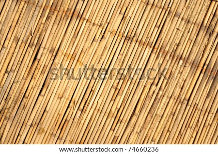 Japanese bamboo texture good for background