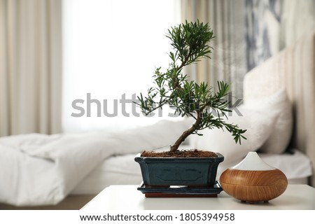 Japanese bonsai plant and oil diffuser on table in bedroom, space for text. Creating zen atmosphere at home Сток-фото ©