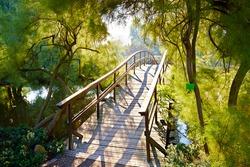 Japanese bridge in Botanical Garden in Wroclaw, Poland