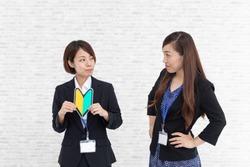 Japanese business woman image, boss and subordinates