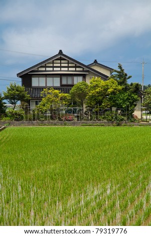 Japanese country house in front of rice fields