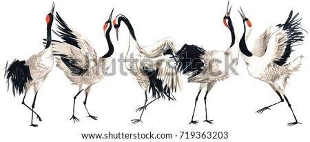 japanese crane bird watercolor...