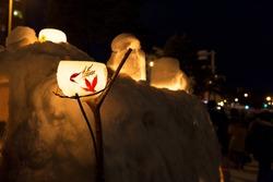 Japanese flower lantern in Otaru Snow Light Path Festival ,Hokkaido ,Japan