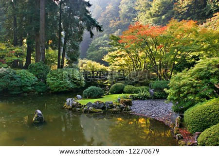 Japanese garden in autumn color