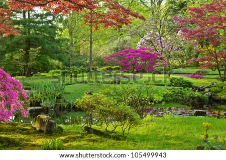 Japanese garden in spring, Den Haag, Holland #105499943