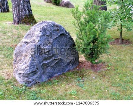 Japanese garden in Tallinn. Selective focus. Selective focus #1149006395