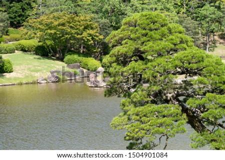 Japanese garden Japanese image Japanese heart