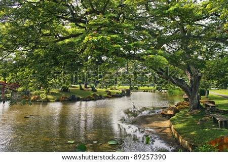 Japanese garden landscape in Singapore