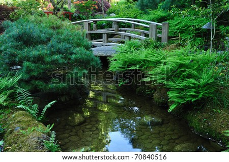 japanese garden landscaping in summer, victoria, british columbia, canada