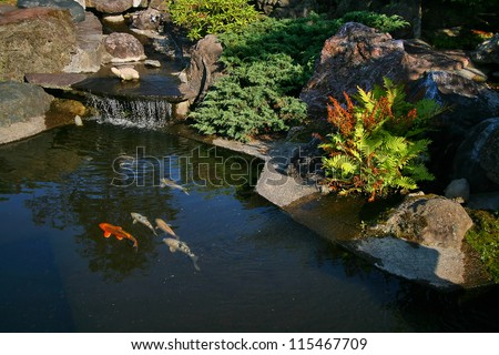 Japanese garden with a small waterfall and a pond with koi.