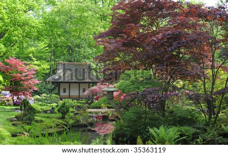 Japanese garden with flowers and small house