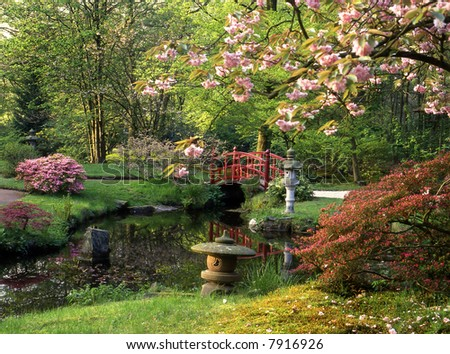 Japanese garden with red bridge - stock photo