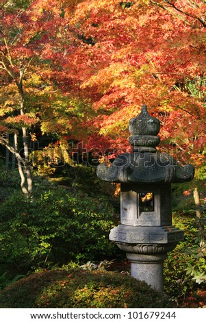 Japanese Lantern in the foreground right. Background of japanese maple trees showing beautiful fall coloring.Japanese Garden,Washington Park Arboretum,Seattle./ arboretum 12 / Beautiful autumn colors!