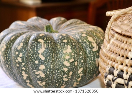 Japanese Pumpkin Squash, also known as Jap, Just Another Pumpkin, Kabocha, or Kent variety. Organic home grown, whole still life close-up, autumn and winter seasonal vegetable natural wicker basket Zdjęcia stock ©