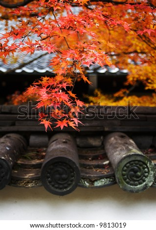japanese red foliage in buddha temple in autumn kyoto - stock photo