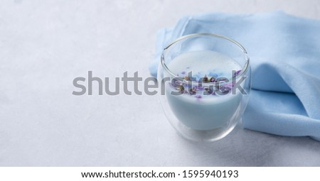 Japanese tea blue matcha from clitoris flowers with milk in a transparent glass on a white background. Copy space
