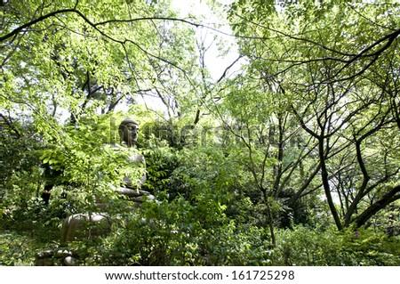 Japanese trees enclose an ancient shrine.