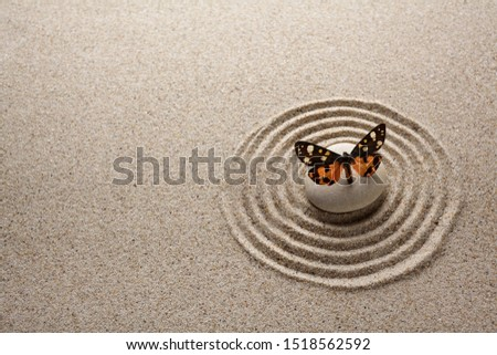 Japanese zen garden stone and butterfly for concentration and relaxation sand and rock for harmony and balance