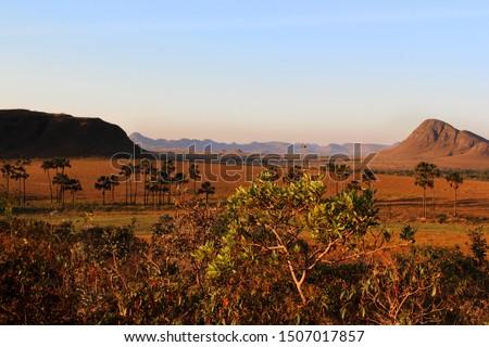Jardim de Maytrea, in Alto Paraíso de Goiás, Chapada dos Veadeiros, located at the Cerrado Goiano biome, a vast tropical savanna ecoregion of Brazil. Foto stock ©