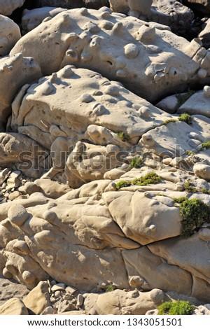 Jasmine Coast, Cape Bruzzano, Detail of rocks, District of Reggio Calabria, Calabria, Italy, Europe #1343051501